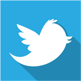 icon_twitter_small